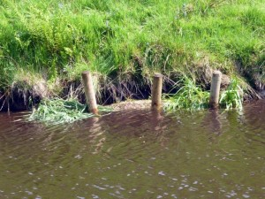 canal-work-14
